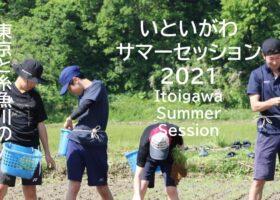 【終了】いといがわサマーセッション2021
